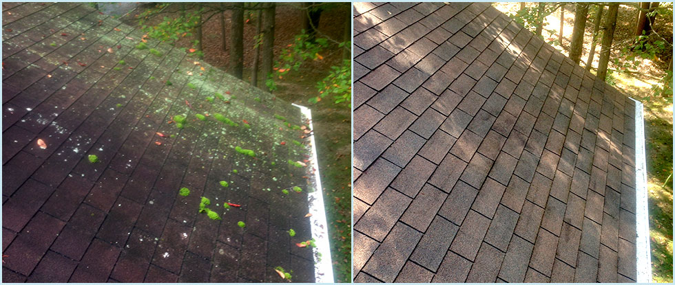 Pressure Washing / Roof Cleaning Before & After
